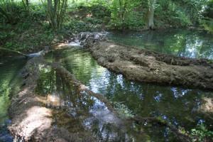 unberührte Natur, Sinterterassen, Bachtal bei Greding