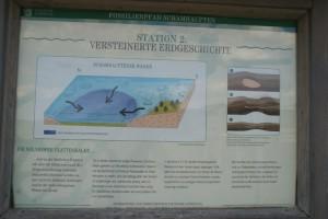 Plattenkalk-Bildung und Versteinerungen, Infotafel, Besuchersteinbruch Schamhaupten