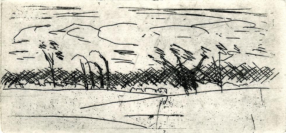 E. Hartwig, LIEBENHOF, 05/2015, Strichätzung, 6,7 x 14,3 cm